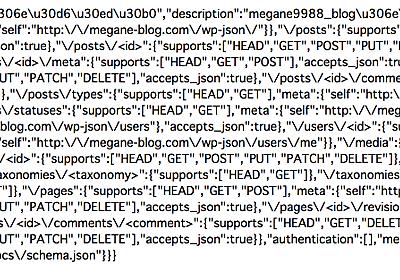 JSON REST API (WP API) プラグインを利用して ブログを API 化したり、そこから情報を取得して表示したり - megane9988のブログ