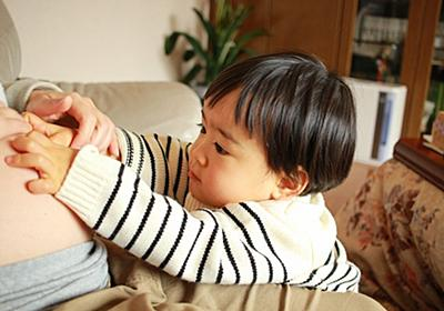 激動の2017年を振り返ります!【息子1歳0ヶ月~2歳0ヶ月】 - 絵描きパパの育児実験記ロクLABO