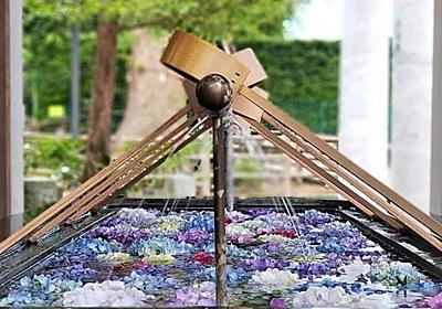 【あじさい】春日神社|カメラとおでかけ