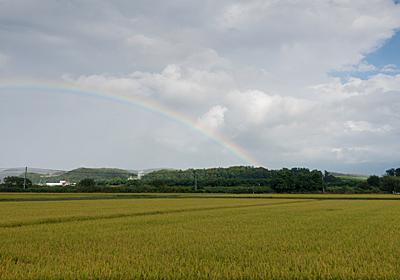 ネットで知り合った同世代の友人が虹の橋を渡った - 941::blog