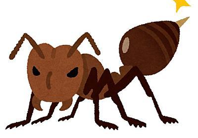 「物心ついたころから昆虫好きの昆虫少年」 Twitterのヒアリ鑑定人「ヒアリ警察」の人柄を探ってみた (1/2) - ねとらぼ