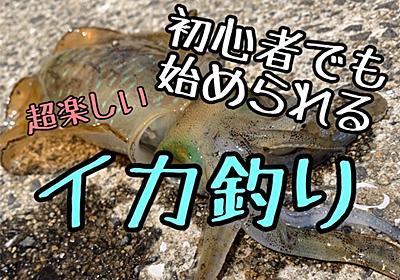 【初心者向け】エギングの始め方!イカ釣りの楽しさ! - ぼんくれの最高の人生ブログ