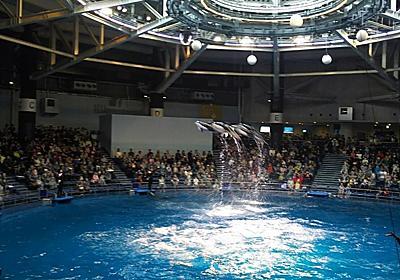 駅近&営業時間が長い水族館!マクセル アクアパーク品川は、「平日の夕方から行ける水族館」でした。 - 明日も暮らす。