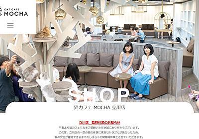 「みんな泣きながら働いてた」 猫カフェ「MOCHA」で猫パルボウイルス発生、店員が悲痛な訴え 関東全店臨時休業へ - ねとらぼ