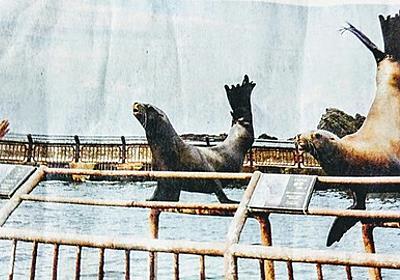 後志が1番❗❗❗:🐻おたる水族館入館者数前年の半分❕夏季通常営業が終了❕