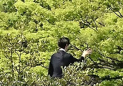 たとえ羽生結弦が写っていなくてもいいんです #羽生結弦の写真撮るの下手くそ選手権 - Togetter