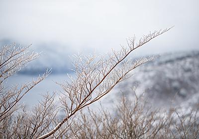 雪の箱根 - An Ordinary Life