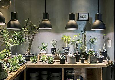グリーンが映える部屋作りしてみない?|特集|Interior|madameFIGARO.jp(フィガロジャポン)