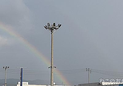 二重虹(ふたえにじ)が出てた! ダブルレインボー! なんだかいい事ありそうな予感! - ねこのおしごと