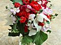 結婚記念日の花束 & エグザイルな話し - bellerose fleuristes