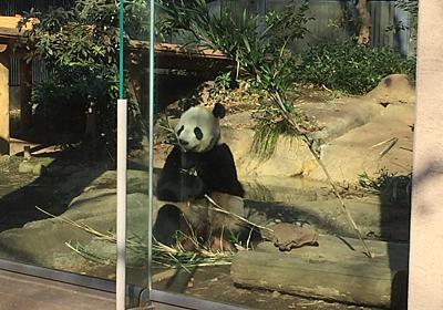 早贄も見れる!上野で動物の世界を覗いてきた - このつまらない世界に終止符を