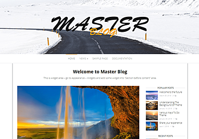 Master Blog – WordPress Theme Review