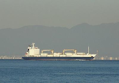 リーファー船SOUTHAMPTON STAR - SHIPS OF THE PORT