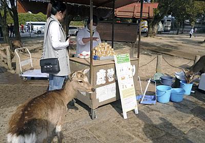 奈良公園:鹿せんべい「じらさずに」 かまれるけが増加 - 毎日新聞