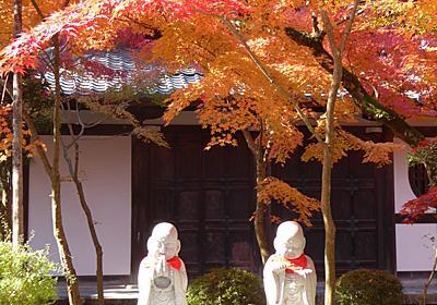 【永観堂の紅葉は別格の美しさ】秋が待ちきれない!色とりどりの紅葉写真をご紹介 - 京都ぶらり散歩&グルメ手帖