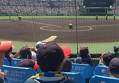 夏の甲子園、「ドリームシート」導入で一変したバックネット裏の風景【第98回・高校野球】   日刊SPA!
