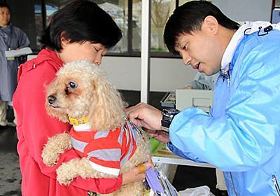 狂犬病、ペットへの予防注射は必要なの?:朝日新聞デジタル