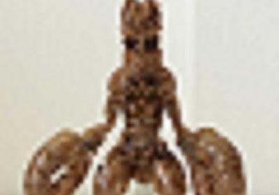 高い再現度とデザインにシビれる……! 蝉の抜け殻で作った「バルタン星人」がかっこよすぎると人気 - ねとらぼ
