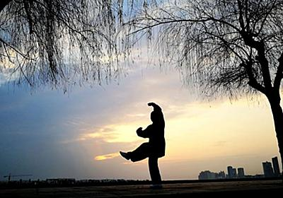西洋格闘技に20秒で惨敗した中国伝統武術の現実:日経ビジネスオンライン