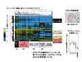 肝芽腫、予後予測に有用なメチル化マーカー「DLX6-AS1」を同定-広島大ほか   QLifePro