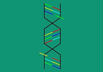 ヒト胚のゲノム編集で、次世代CRISPR技術に先鞭をつける中国|WIRED.jp
