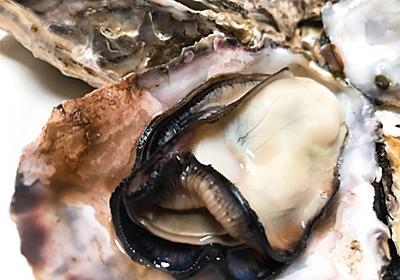 冬の絶品!兵庫県坂越産の牡蠣。この旨さはハンパないっ! - 登山やキャンプや日々のこと