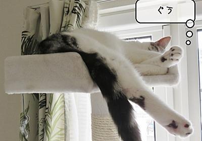 猫の道具 ~もふもふ毛対策新兵器登場~ - 猫と雀と熱帯魚