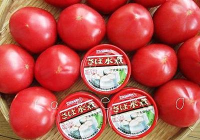 小池知事が東京封鎖の可能性に言及!食料備蓄とお米の注意ポイント - 貯め代のシンプルライフと暮らしのヒント