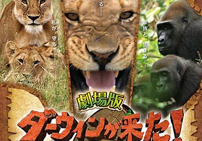 NHK「ダーウィンが来た!」が映画化。野生の王国アフリカで3つの物語 - AV Watch