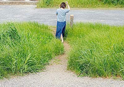 河原にある「土手けもの道」をじっくり見る :: デイリーポータルZ