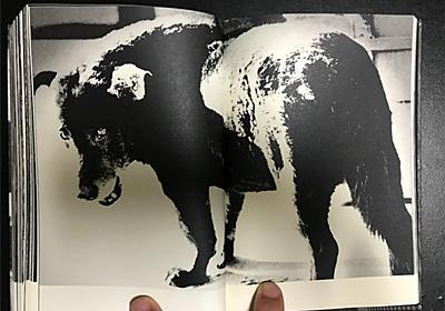 作品集『Terayama(日本語版)』/森山大道 - Jitz. LIFESTYLE
