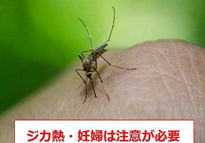 ジカ熱の症状・感染経路・妊婦への影響・予防法について | HOTNEWS