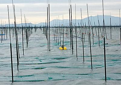 ひろがる水産業のIoT、養殖魚をスマホで確認:日経ビジネスオンライン