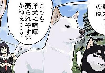 """「とにかくガン見」 柴犬が""""威嚇している""""と誤解されやすい理由を描いた漫画に多くの柴飼いから共感の声 - ねとらぼ"""