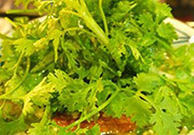 ベトナムの丸亀製麺はパクチー盛り放題 - デイリーポータルZ