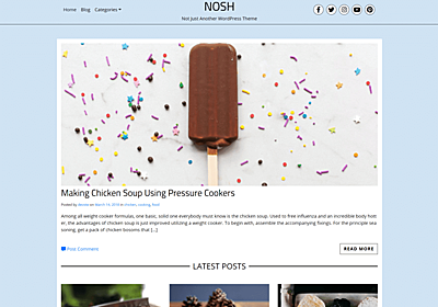 NOSH STW – WordPress Theme Review