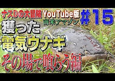 【#15】ナスDの大冒険YouTube版!南米アマゾン 獲った電気ウナギその場で喰らう編/Crazy Director 's  Gigantic Electrical eel Caught - YouTube