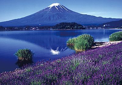 【山梨】感動!富士山とラベンダーの絶景花畑ドライブ - じゃらんnet