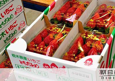 「納豆にイチゴが負けてどうする」 地元愛熱すぎて謝罪:朝日新聞デジタル