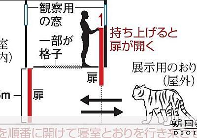 「トラと鉢合わせあり得ない」 猛獣飼育ベテランがなぜ:朝日新聞デジタル