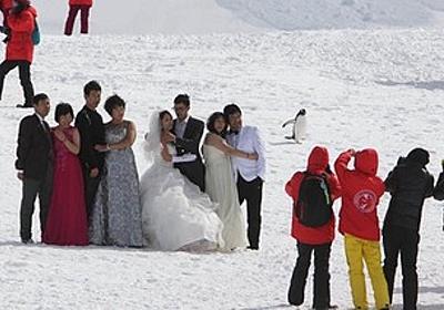 痛いニュース(ノ∀`) : 南極に中国人が殺到し環境破壊 「ペンギンに触れないで」という注意も無視 - ライブドアブログ