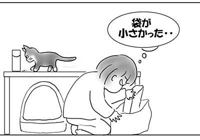 ものぐさのツケ - 猫とビー玉