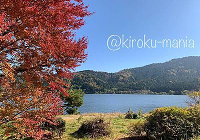 秋の余呉湖でのんびり - 続キロクマニア
