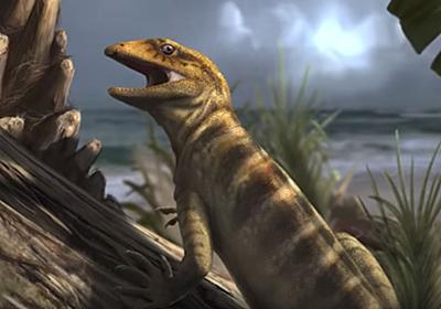 最古のトカゲの化石を発見、「全てのトカゲの母」 | ナショナルジオグラフィック日本版サイト