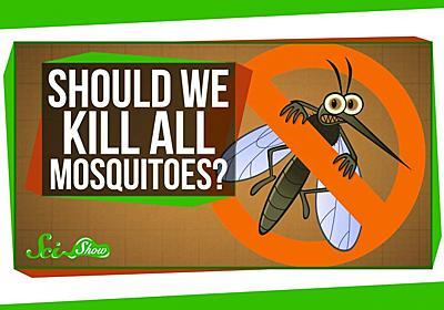 人類がすべての蚊を絶滅させたらどうなるか? - ログミー