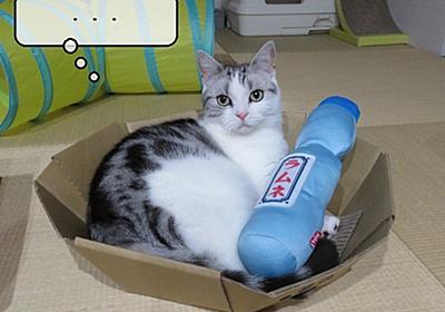 猫雑記 ~退屈を感じているらしい猫様すずめ~ - 猫と雀と熱帯魚