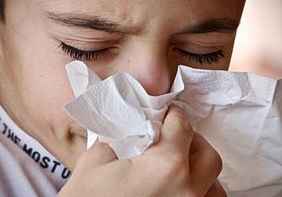 インフルエンザに関する「6つの誤解」とは? - GIGAZINE