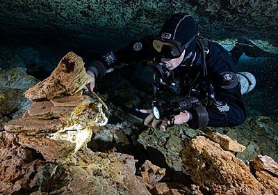 未踏の水中洞窟で1万年前の人類の痕跡を発見 | ナショナルジオグラフィック日本版サイト