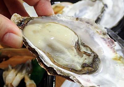 【漁協の直売店】わざわざ連休を使ってでも北海道・厚岸まで旅に行くべき理由とは(特に牡蠣) - メシ通 | ホットペッパーグルメ