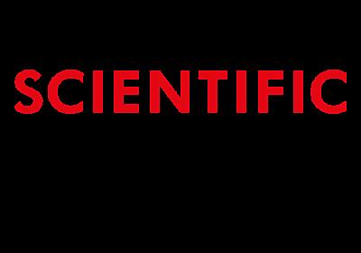 ネアンデルタール人消滅の謎を解くヒントは脳にある | Scientific Reports | Nature Research